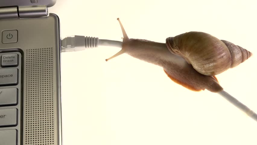 The snail slowly crawls on the Internet cable. Concept of slow Internet connection.High speed camera shot. Full HD 1080p.  | Shutterstock HD Video #30836545