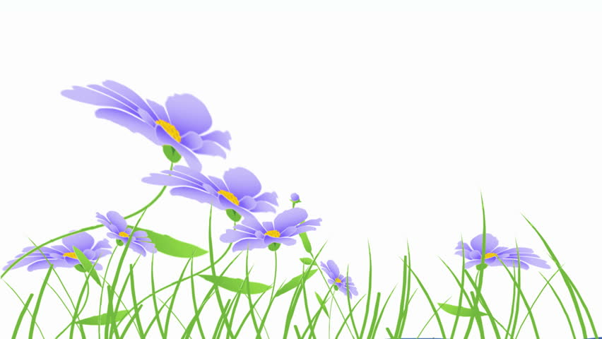 blue flowers animation