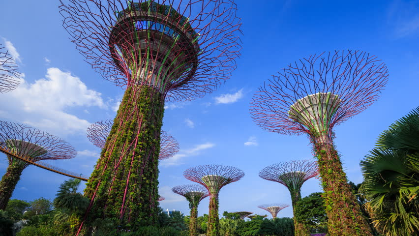 singapore aug 21 2017 time lapse of supertree of gardens by the