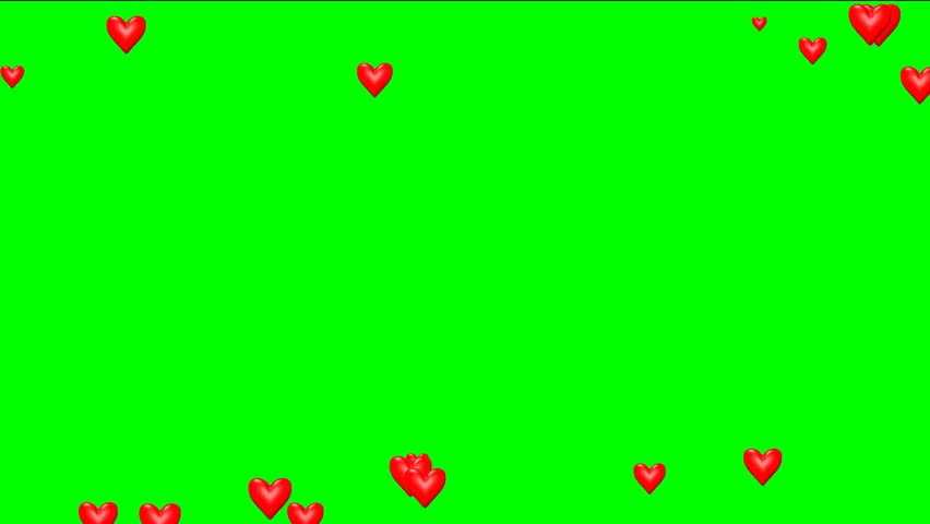 Amazing animated beatig hearts video frame on green chroma key background. Footage frame animated for websites, titles, presentation and labels for wedding and love story video film.