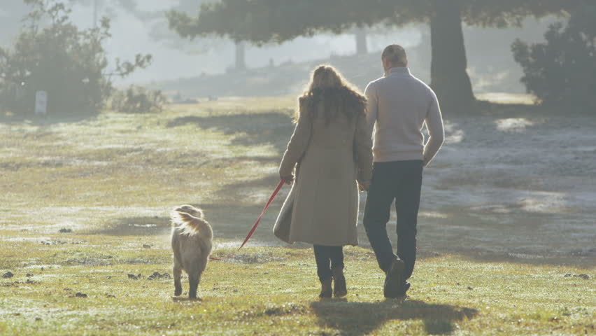 Happy couple in love holding hands and walking with their dog, through a forest clearing on a bright autumn morning. Shot from behind and in slow motion.