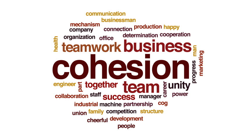 definition national cohesion What is social cohesion in sociology definition: cohesion is the degree to which those in a social system identify with what is national cohesion and.