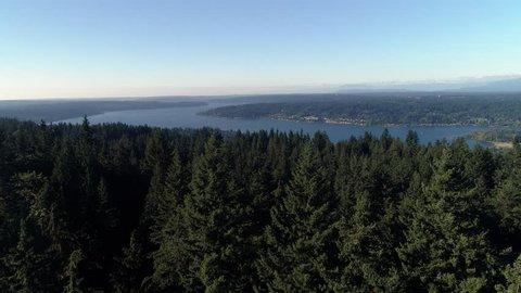 Aerial Over Washington Forest Trees Revealing Lake Sammamish