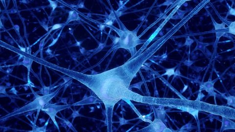 Neuronal and Synapse Activity animation. Electrical impulses inside the human brain. Blue.