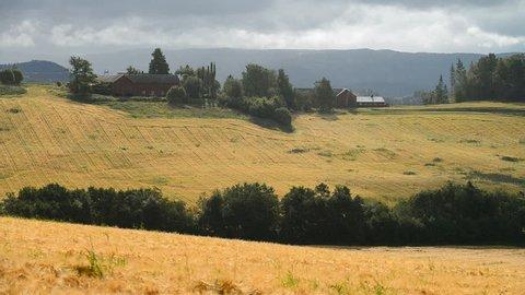 Landscape wit fields, near Skatval, Norway, Scandinavia, Europe.