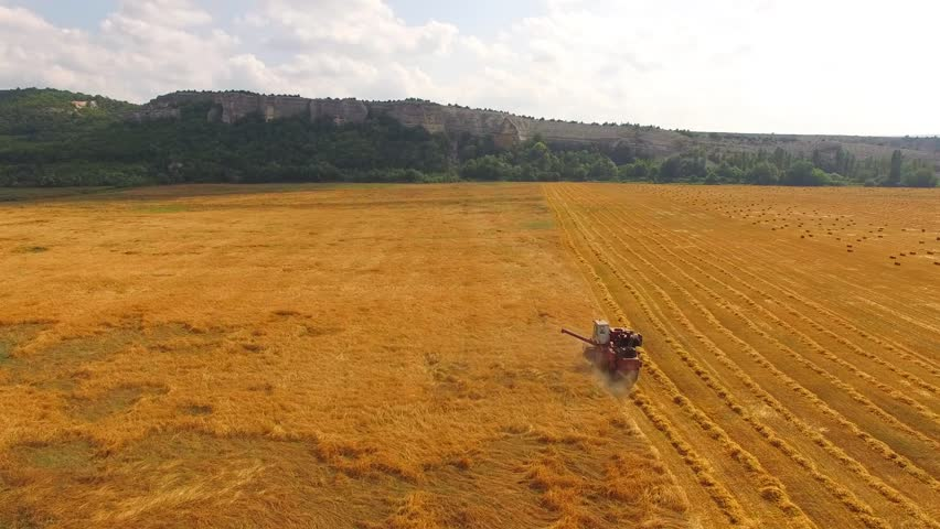 Harvesting wheat on a harvester | Shutterstock HD Video #31704445