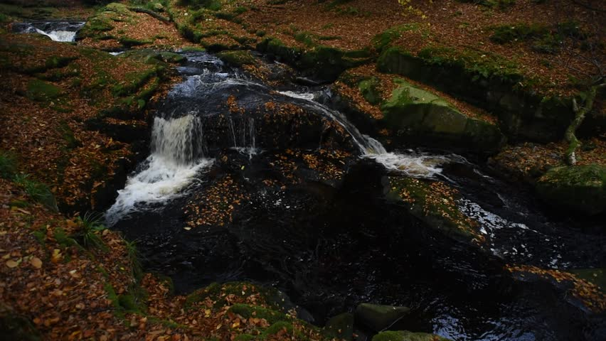 Autumn river in the forest in Wicklow Mountains - Ireland/ Autumn river/ Autumn river cascade in Ireland | Shutterstock HD Video #32045545