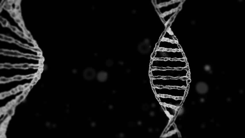 3d Motion Graphics of Dna Stock Footage Video (100% Royalty-free) 32275555    Shutterstock