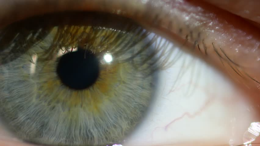 Male eye macro video. The pupil close-up moves in the eye. #32363605