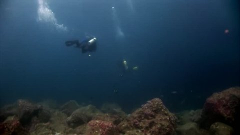 Scuba divers underwater in blue abyss in Galapagos. Unique beautiful video. Abyssal relax diving in world of wildlife. Natural aquarium of sea and ocean. Multicolor animals.