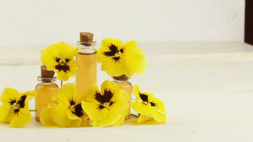 pansies essential oil in  beautiful bottle on  White background