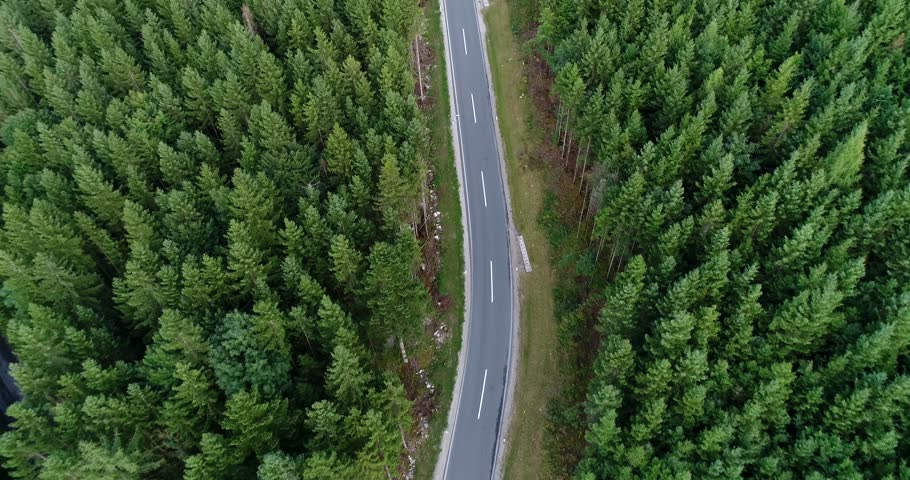 Aerial flight over the car driving along the road surrounded by forest. Austria location.