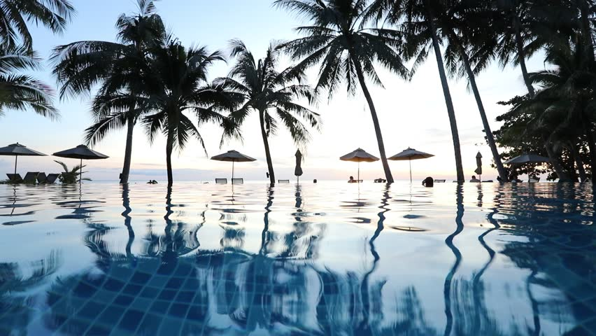 Swimming pool in beachfront tropical hotel resort with coconut palm trees landscape for beach holidays vacation, luxury destination | Shutterstock HD Video #33089365