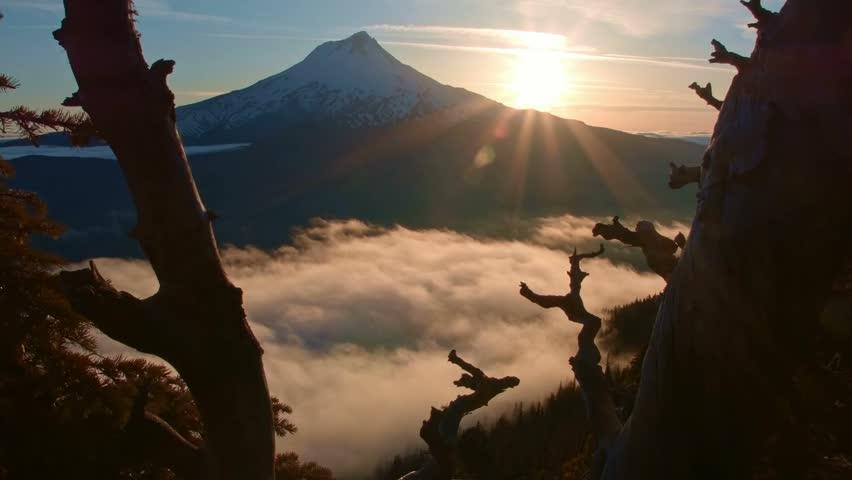 Sunset mist and fog and mountain dead tree snag Inversion Mt. Hood Oregon Cascades