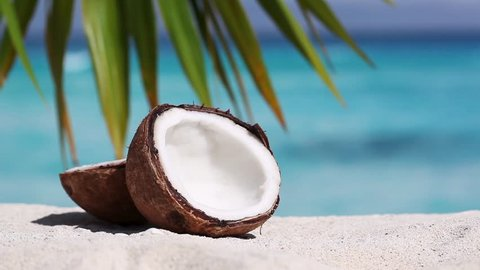 Two halfs of cracked brown coconut on white sandy beach with turquoise sea background, closeup