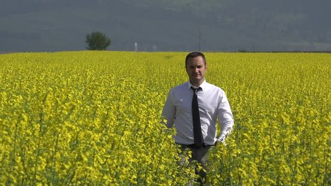 Handsome businessman walking in blossom yellow field