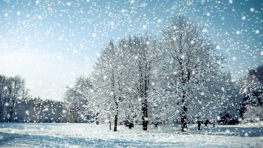 Tree in a field in winter with falling snow, blue. Snow forest snowfall. Christmas Winter New Year background trembling flame Scenery. Fairy magic forest flashlight. Seamless loop, concept
