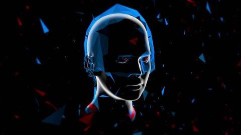 3D Virtual Girl / Low polygon, futuristic motion design.