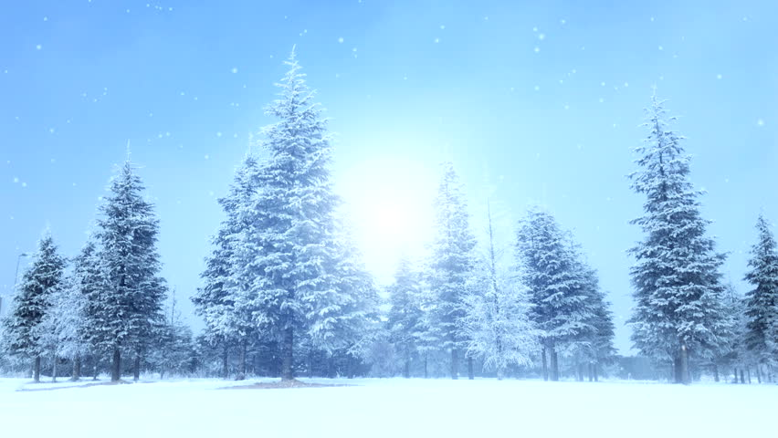 Snow Forest realistic animation | Shutterstock HD Video #33745315