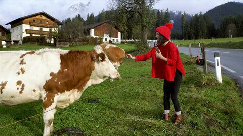 A pretty girl petting a cow in the village