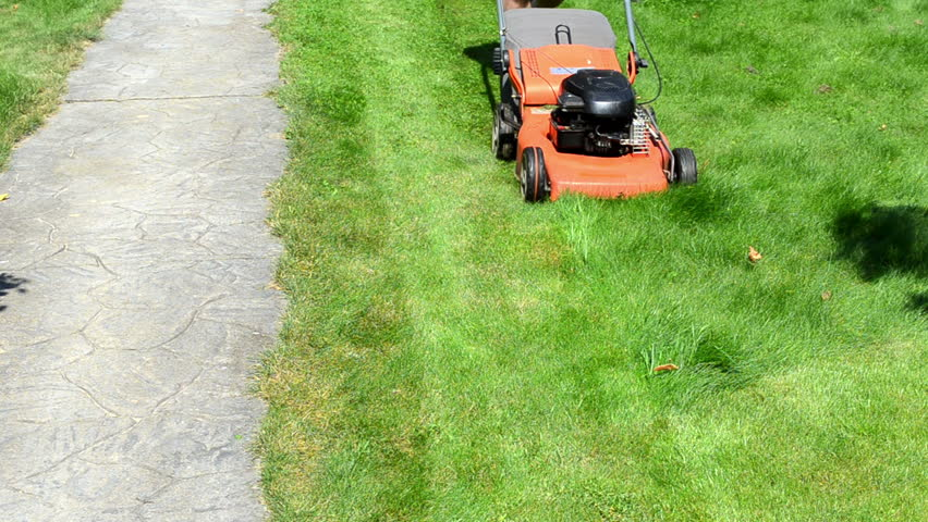 gardener male man in shorts and flip-flop shoes push mower cut lawn grass near stone path.
