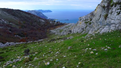 Beech forest in autumn, Cerredo Mountain, Montaña Oriental Costera, Cantabrian Sea, Castro Urdiales, Cantabria, Spain, Europe