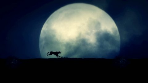 Wolf Running on a Rising Full Moon Night
