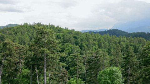 Beautiful Amazing mountain panorma with green trees