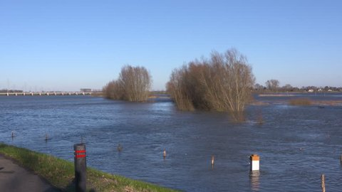 rising water level river IJssel, flooded trees in river landscape. Tolbrug, a bridge with a movable inlet across the high water channel, in background. VEESSEN, THE NETHERLANDS - JANUARY 7, 2018