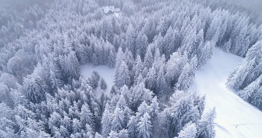 Aerial view of a Cabin in Winter idyllic snow establishing shot. Cozy mountain cabin in the frozen forest. Aerial view over a mountain hut covered with snow. Fly over frozen snowy fir and pine trees