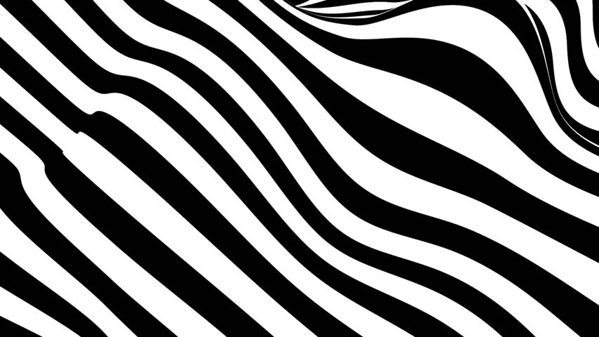 Abstract black and white striped optical illusion three dimensional geometrical wave shape pattern illustration motion graphics background