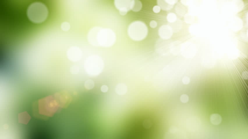 Natural green motion background (seamless loop) | Shutterstock HD Video #3507950