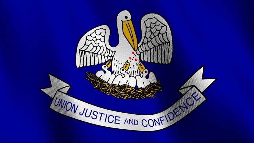 Louisiana State Flag Stock Footage Video   Shutterstock