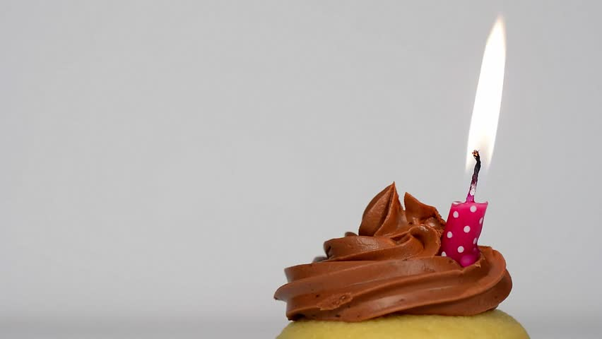 One Chocolate Birthday Cupcake With One Burning Red Candle ...
