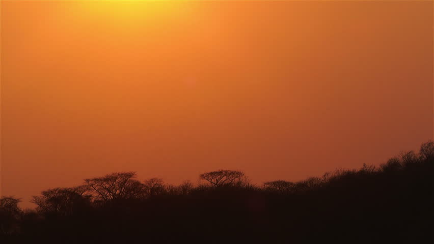 African Sunset over Jungle in Dry Season Timelapse