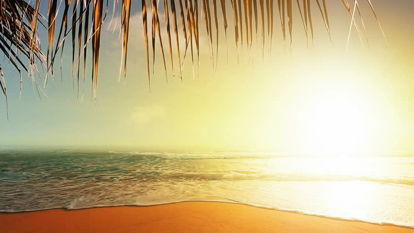 Amazing sunset over the tropical beach | Shutterstock HD Video #3805313