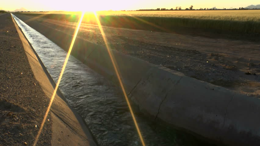 Farm irrigation ditch, flowing with water, nourishing field crops, lit by bright, yellow rays of setting sun. 1080p