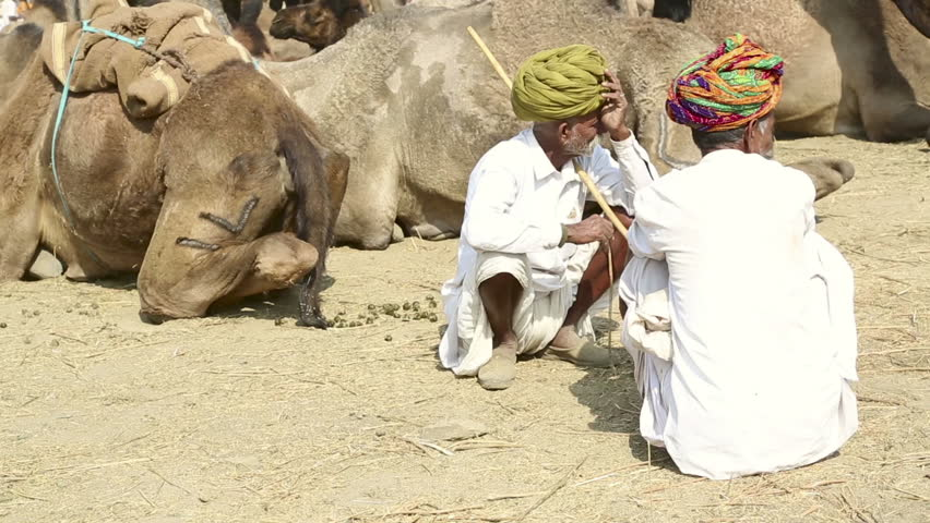 PUSHKAR, INDIA - NOVEMBER 20, 2012: Two men talk, Pushkar Camel Mela (Pushkar Camel Fair) on November 20, 2012 in Pushkar, Rajasthan, India. This fair is the largest camel trading fair in the world.