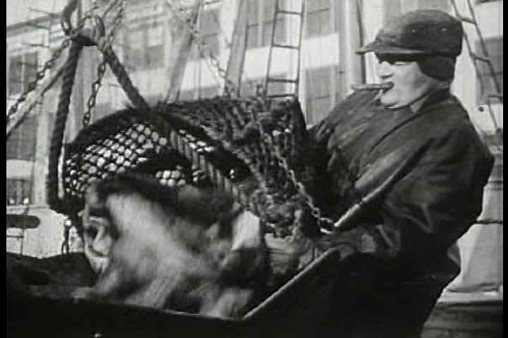 1950s - Mass production and factories with hundreds of specialized workers have allowed for greater productivity in all industries. Oscar Brand signs about fishermen, textile workers, logging, | Shutterstock HD Video #3949160