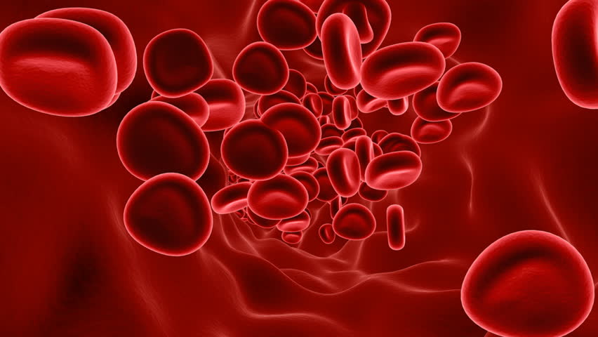 Cartoon Blood Cell Wallpaper
