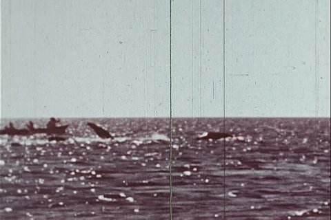 1970s - Eskimos hunt whales in the 1970s.