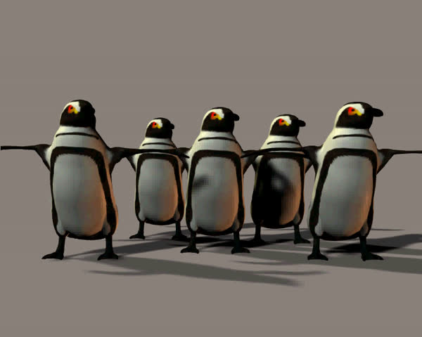 A chorus line of dancing penguins