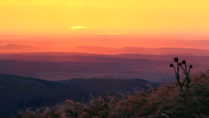 Evening scene   Shutterstock HD Video #4274615