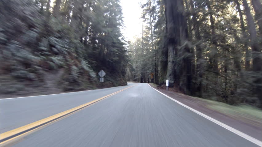 Time lapse POV view driving westward through Redwood forest on Highway 199 in