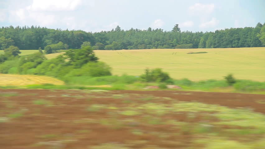 Train moving through green grassed countryside