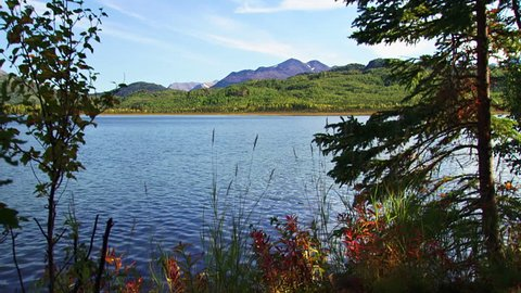 A scenic view of a clean blue lake and gentle rolling mountains from a forested coastline in Alaska