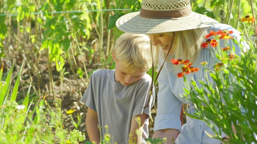 A cute little kid listens to his grandmother as she teaches him to garden. Medium slow motion shot. | Shutterstock HD Video #4663985