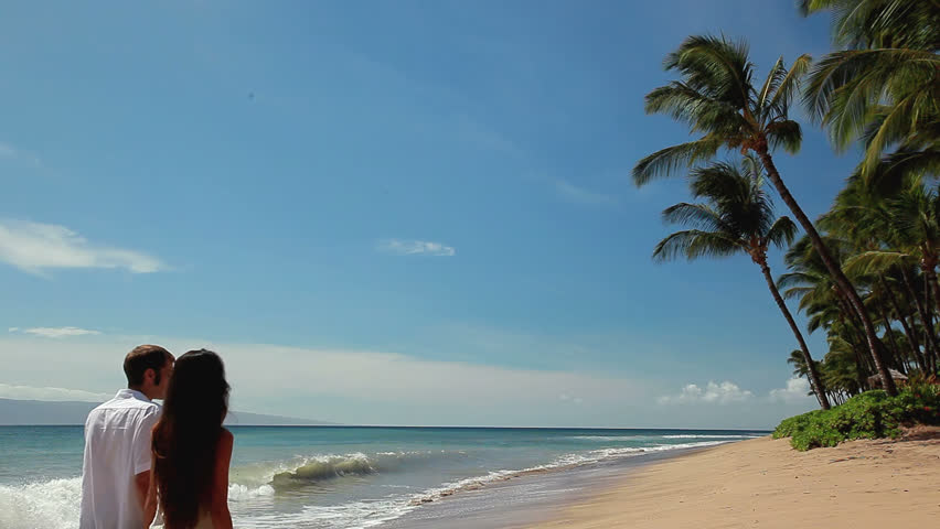 A couple walks away from the camera towards a tree on a beach in the sand on a sunny day