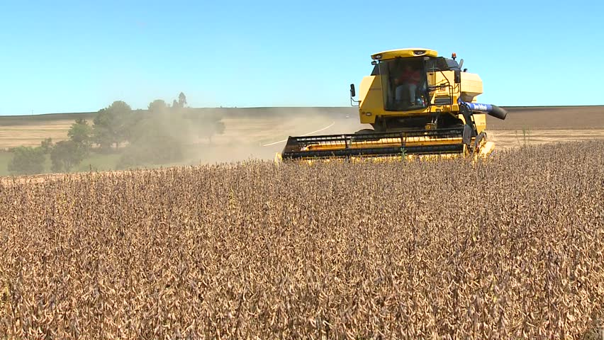 machine harvesting soybeans in a farm with a road in background
