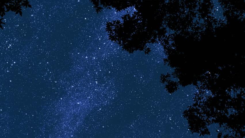 Night Stars 2